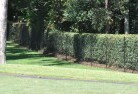 Abington NSW Chainlink fencing 10