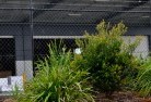 Abington NSW Chainlink fencing 13