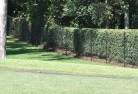 Abington NSW Chainmesh fencing 11