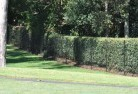 Abington NSW Wire fencing 15
